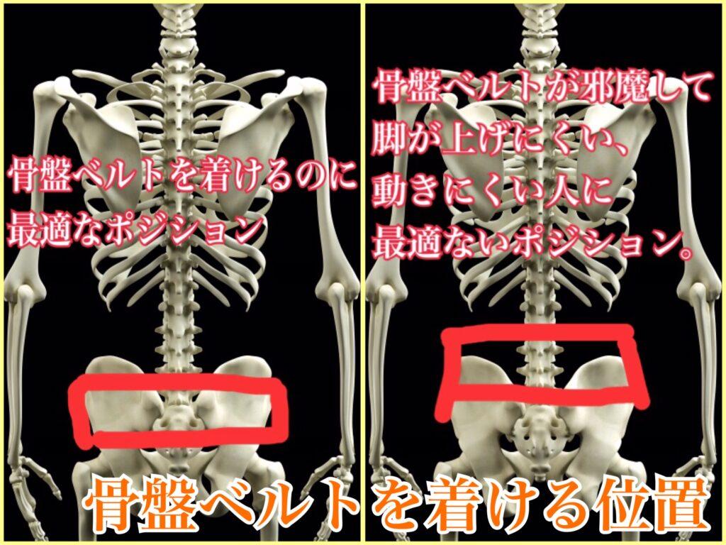 骨盤ベルトを巻く位置