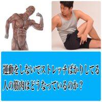 運動不足の人・運動をしない代わりにストレッチだけやってる人の筋肉